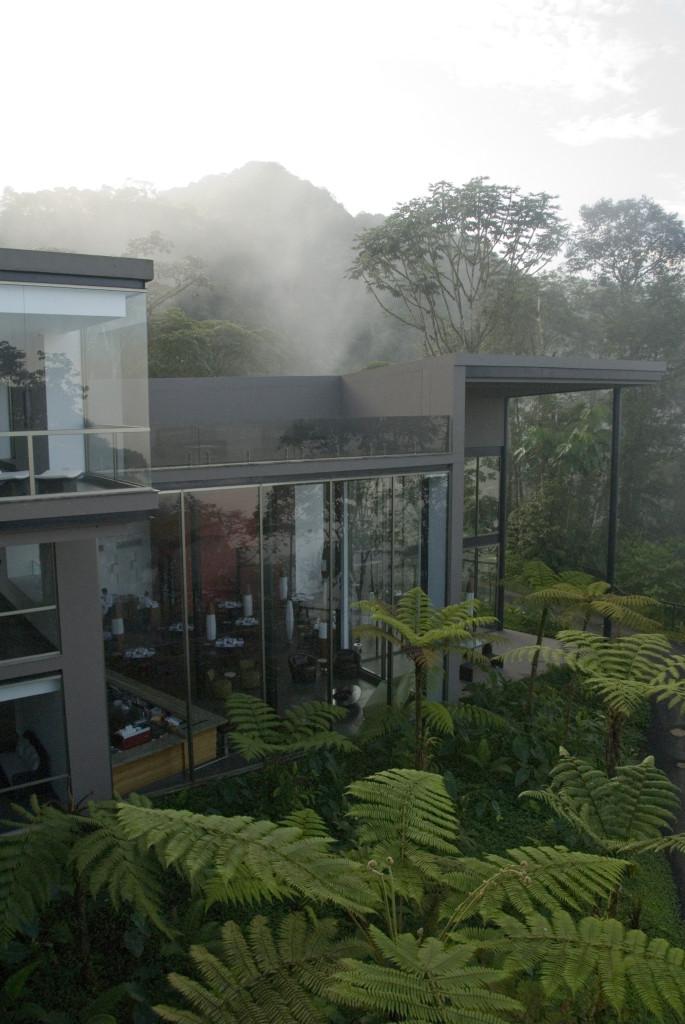 Cocoon in the Clouds, Mashpi Lodge Ecuador