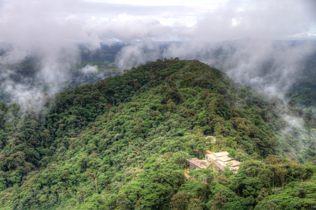 view from Observation Tower looking at Mashpi Lodge Ecuadorian Cloud Forest